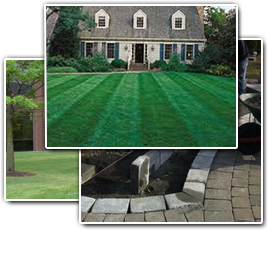 Neptune landscaping-gallery