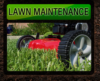 About wall lawn maintenance lawn pro lawn garden for Lawn care and maintenance